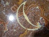 Custom moon flooring inlay design